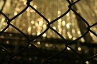 chain link fence and reflctions in rainwater