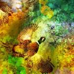 """""""Pheasantcard"""" by Van-Renselar"""