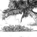 """Rangiroa, Tuamotu Islands, French Polynesia"" by canvass22"