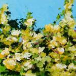 """""""Versaille Garden"""" by allanfriedlander"""