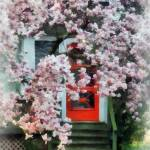 """Magnolia by Red Door"" by susansartgallery"