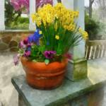 """Daffodils and Pansies in Flowerpot"" by susansartgallery"