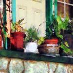 """Plants on Porch"" by susansartgallery"