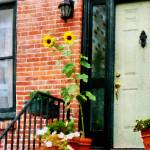 """Sunflowers on Stoop"" by susansartgallery"