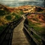 """Moonlit Mile"" by RCdeWinter"