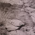 """gardens penand ink - Copy"" by Dennisartist"
