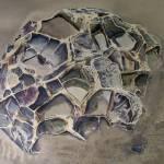 """""""moreiki boulder dying"""" by Dennisartist"""