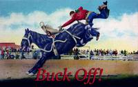 Buck off Bucking Bronco