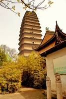 Small Wild Goose Pagoda, Xian, China