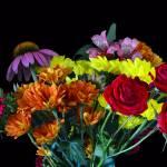 """""""Floral Bouquet"""" by last_light"""