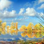 """Autumn Waters"" by zenin"