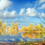 """""""Autumn Waters"""" by zenin"""