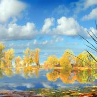 Autumn Waters Art Prints & Posters by Igor Zenin