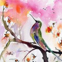 Hummingbird Watercolor Square Format