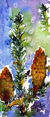 Pine Cones Autumn Trees Watercolor