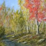 """""""Red maple creek"""" by Matthew_Hannum"""
