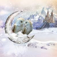 Owls in Winter Wonderland