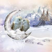Owls in Winter Wonderland Art Prints & Posters by Anne Vis