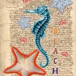 """Beach Seahorse"" by artdeep"