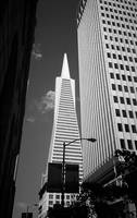 San Francisco - Transamerica Pyramid Building