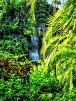 Bahamas - Tropical Waterfall