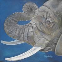 Elephant in Blue