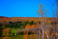 Duluth Golf in Autumn