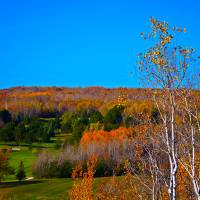 Duluth Golf in Autumn Art Prints & Posters by Robert Meyers-Lussier