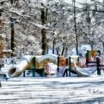 """Winter Playground"" by susansartgallery"