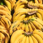"""Fresh Bananas at the Market"" by rhamm"