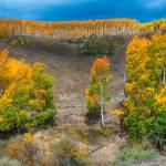 """Aspen Ridge"" by NewTake"