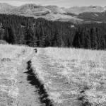 """The Long Trail Home"" by jen_vanhaur"