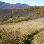 """""""Overmountain Shelter and Appalachian Trail"""" by jcarillet"""