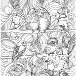 """Bird Love"" by lindalou2"
