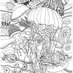 """""""Ocean Jellies"""" by lindalou2"""