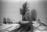Winter landscape with a road