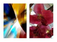 Red Floral Diptych