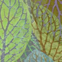Veined Leaves Art Prints & Posters by Cora Niele