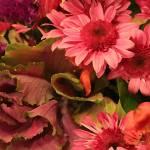 """""""Lettuce Bouquet"""" by SplitWindow"""