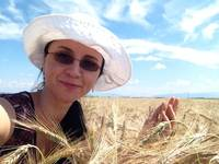 Isabela_Dunklin_wheat_grain_Romania_field 2015