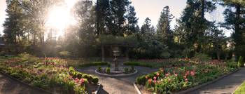 Van Vleck Estate Garden's at Sunset