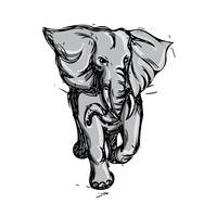 Elephant Rampaging Isolated Drawing