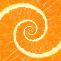 Spiral Citrus Orange Droste