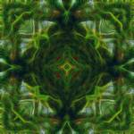 """Moss Greenhouse Mandala"" by richardhjones"