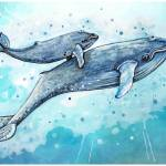 """Blue Whales"" by Littlepig"