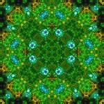 """The Greenhouse Mandala IV"" by richardhjones"