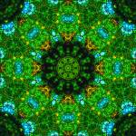 """The Greenhouse Mandala V"" by richardhjones"