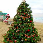 """Christmas at Crystal Cove 2015"" by robertmeyerslussier"