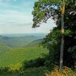 """""""Blue Ridge Mountains, Virginia"""" by Ffooter"""