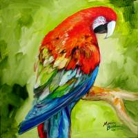 MACAW TROPICAL Art Prints & Posters by Marcia Baldwin